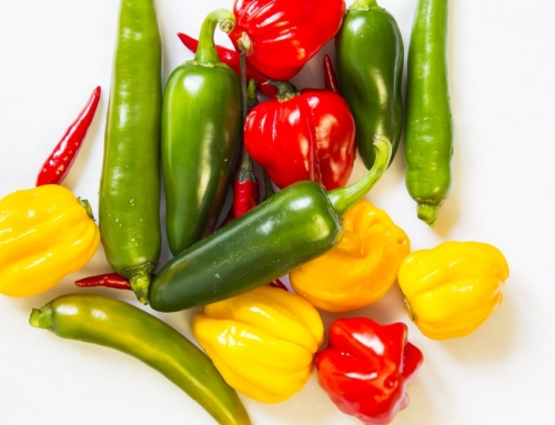 An Ultimate Guide to Chile Peppers